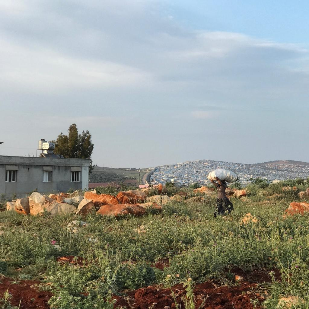 A potato field just beyond the Syrian border